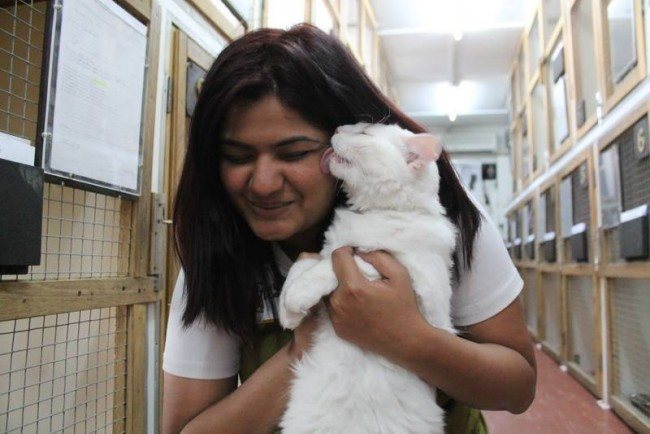 A DKC Girl Cuddling A White Cat