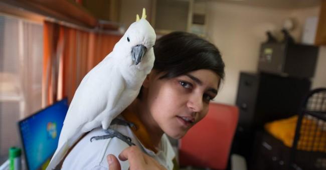 bird on shoulder