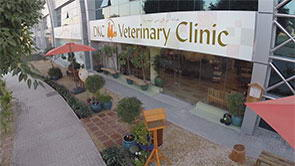 <span>DKC Veterinary Clinic</span>