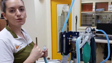 Checkin' that Anaesthetic Machine